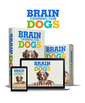 Brain Training For Dogs, Save Water Team