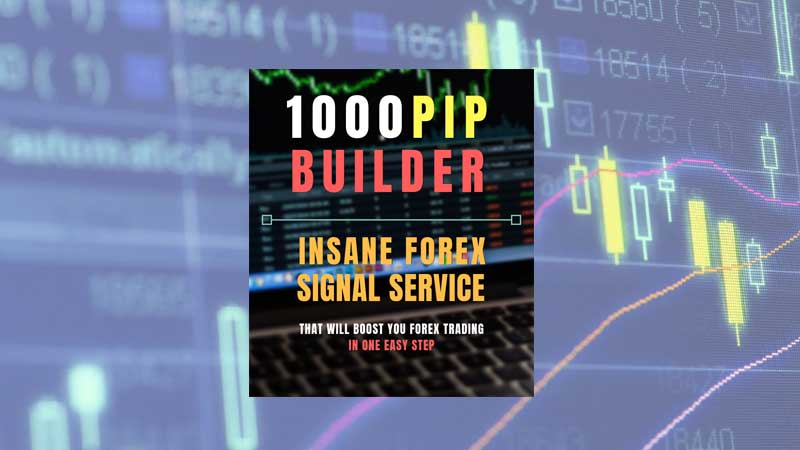 1000pip Builder Review1