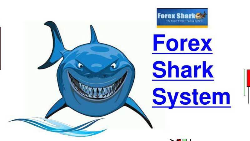 Forex Shark review download pdf
